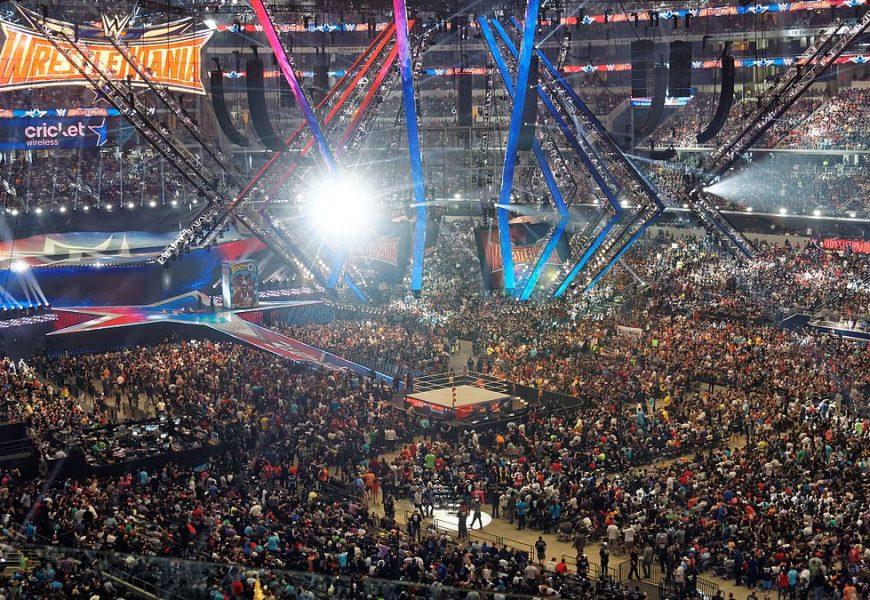 Il giro d'affari della World Wrestling Entertainment