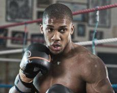 Boxe, Joshua torna campione mondiale dei pesi massimi