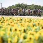 ciclisti del Tour de France tra i fiori