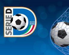 I gironi del campionato di Serie D 2019-2020